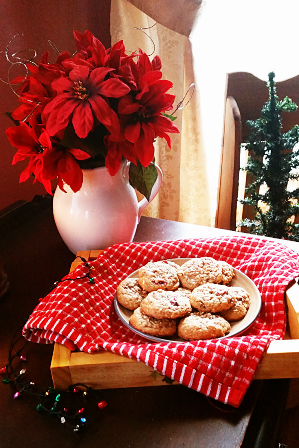 oatmeal-cranberry-cookies-1