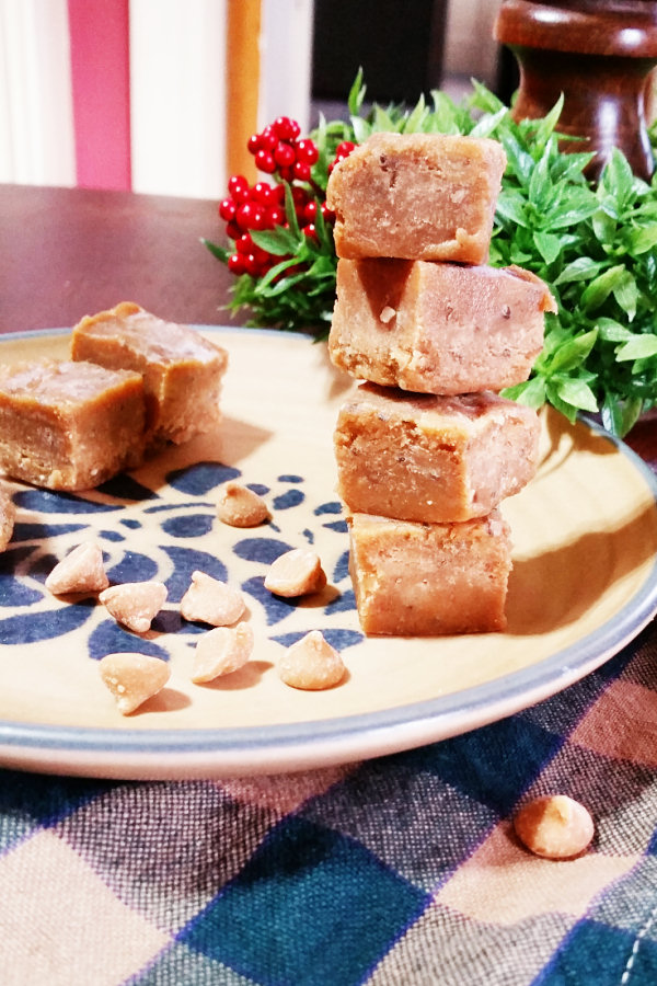 peanut-butter-banana-freezer-fudge-1