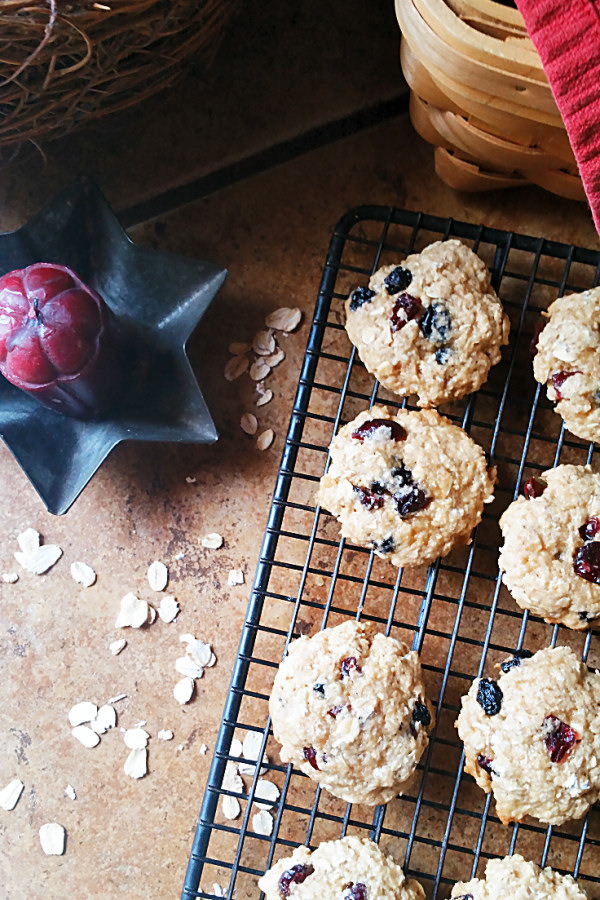 berry-oatmeal-cookies-1